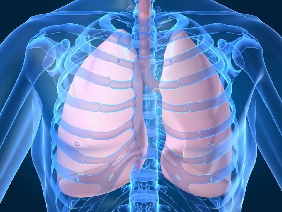 Die Atmung ist neben dem Herzschlag einer der wichtigsten Grundrhythmen Deines Körpers. Viele Entspannungstechniken laufen über die Veränderung Deines Atems durch Atemübungen. Atemübungen helfen Dir, in einen ruhigen und entspannten Zustand zu gehen.